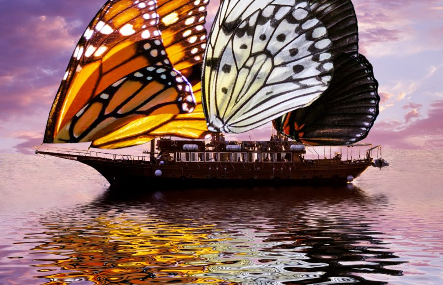 The Butterfly Ship - Jan Lightfoot