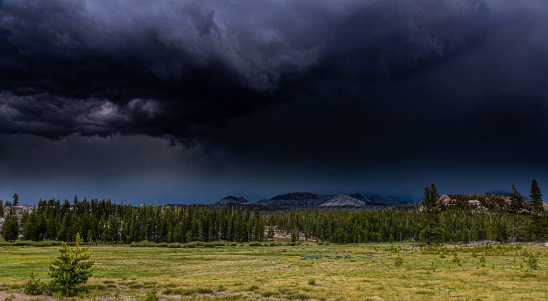 Tuolumne Meadows Storm - Leonard James