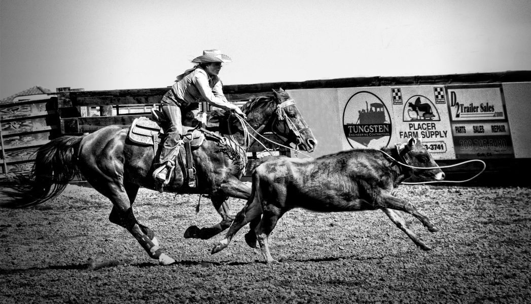 Girl's Rodeo Roping Competition - Donna Sturla