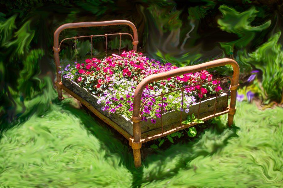 Flowerbed in Dreamland - Gert Van Ommering