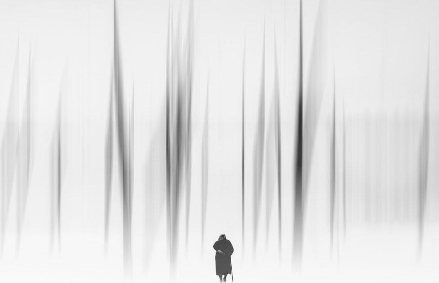 The Season of Winter - Jan Lightfoot
