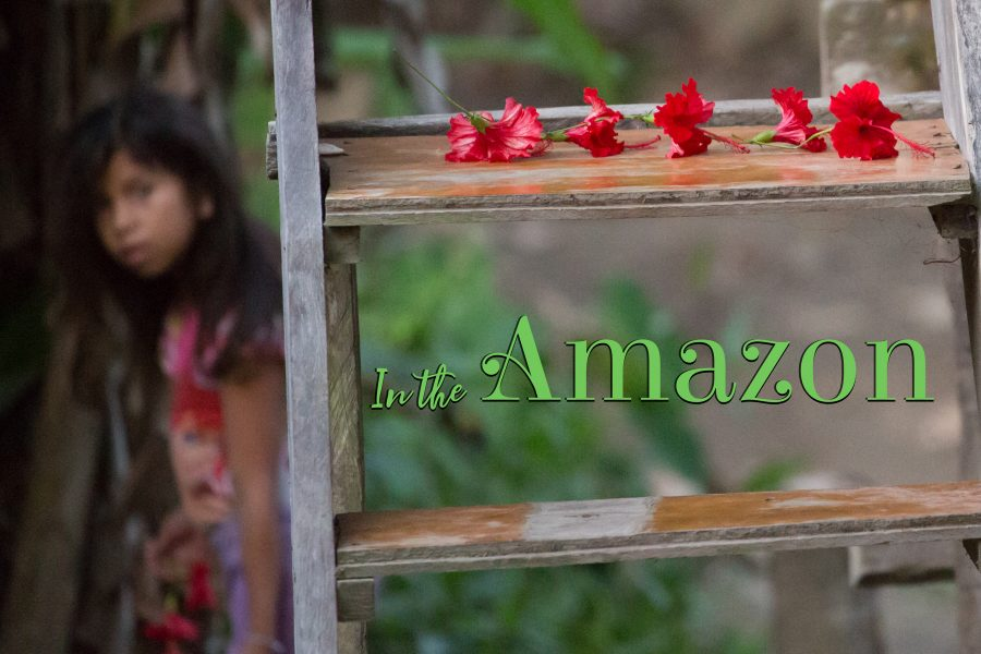 In the Amazon 01 - Jan Lightfoot