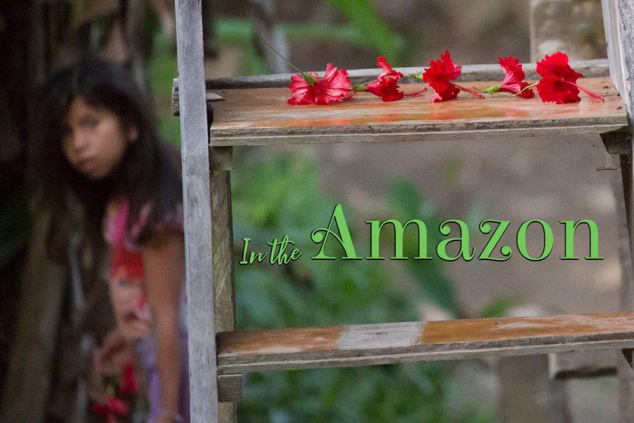 In the Amazon 01 - Jan Lightfoot