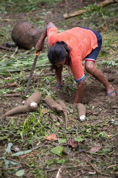 In the Amazon 03 - Jan Lightfoot