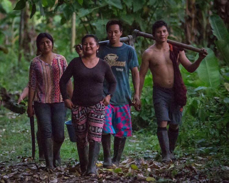 In the Amazon 04 - Jan Lightfoot