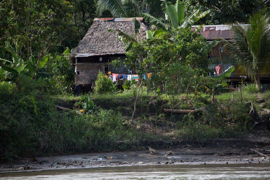 In the Amazon 05 - Jan Lightfoot