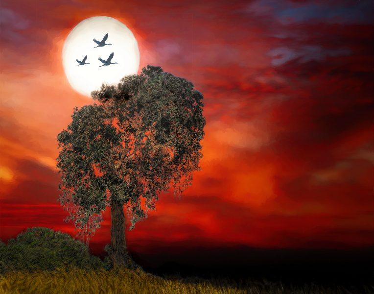 Moonrise Over Consumnes - Lucille Van Ommering