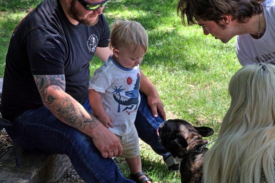 Boy Meets Dog - Ed Lindquist