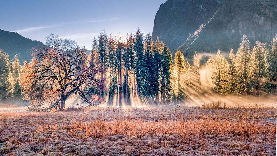 A Morning in Yosemite - Hayata Takeshita