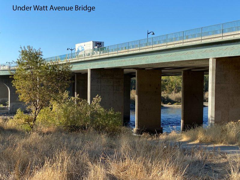 Under the Watt Avenue Bridge, Sacramento 01 - Theo Goodwin
