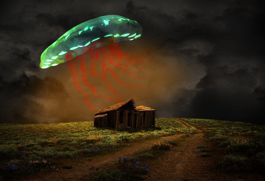 Night of the Jellyfish - Jan Lightfoot