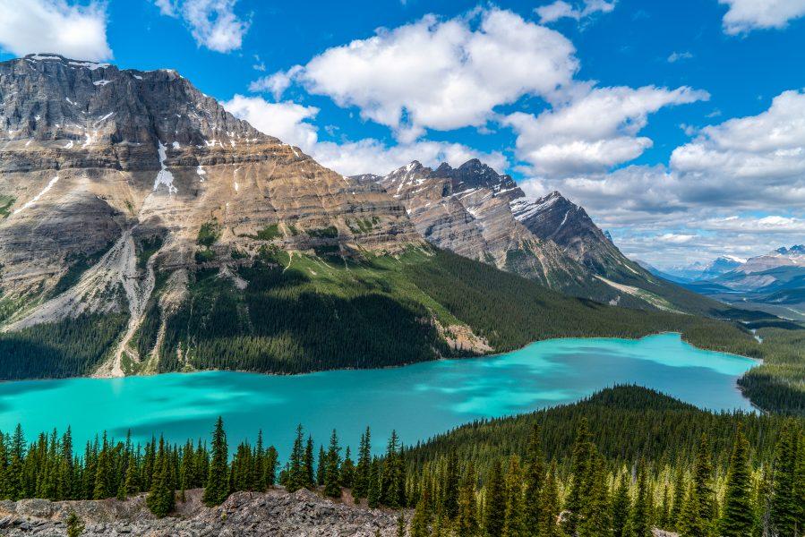 Peyto Lake Canada - Deatley Cahill