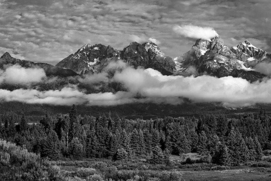 Grand Tetons Early Morning - Pat Honeycutt