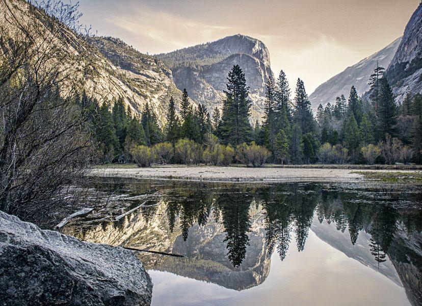 Spring Morning Yosemite - Kathleen Grady