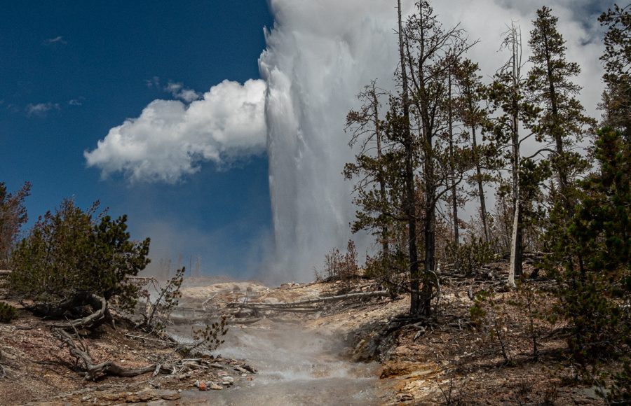 Steamboat Geyser Erupting - Yellowstone National Park - Chuck Honeycutt