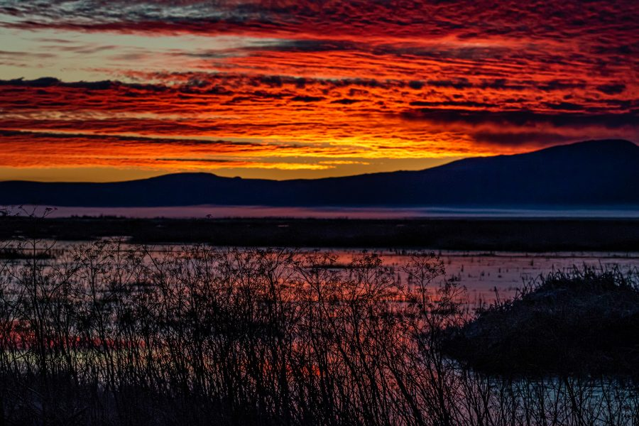 Klamath Falls Sunrise - Leonard James