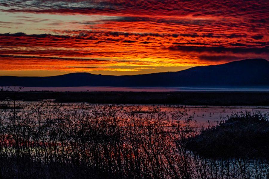 Klamath Falls Sunrise - Leonard James