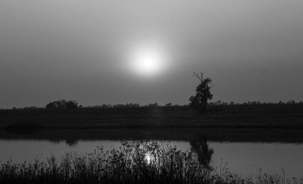 Sunset at Sacramento Water Channel - Laura Berard