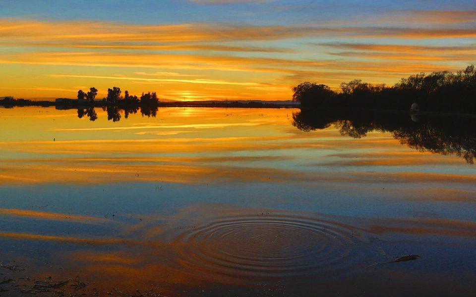 Glorious Reflection - Truman Holtzclaw