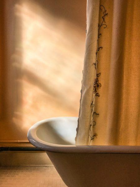 The Guest Bathroom - Jan Lightfoot