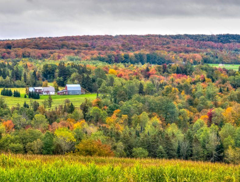 Autumn in Vermont 02 - Doug Arnold