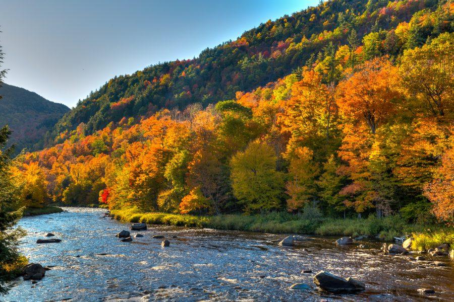 Autumn in Vermont 04 - Doug Arnold