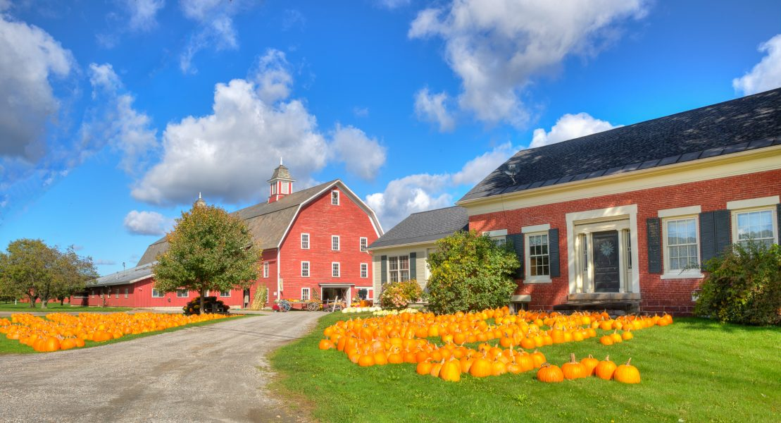 Autumn in Vermont 05 - Doug Arnold