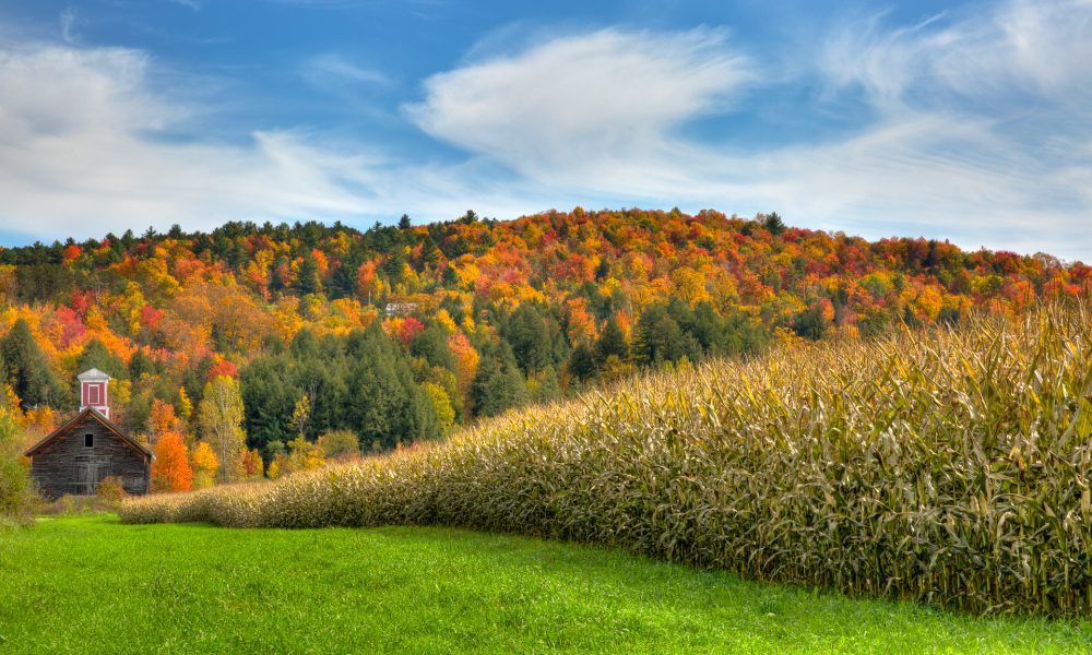 Autumn in Vermont 07 - Doug Arnold