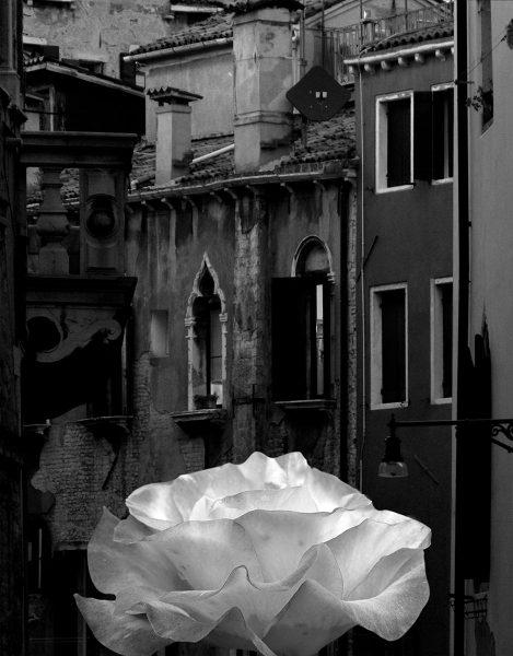 Ah Venice - Bob Hubbell