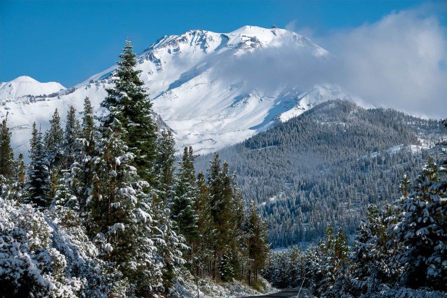 Mount Shasta - Irene Berger