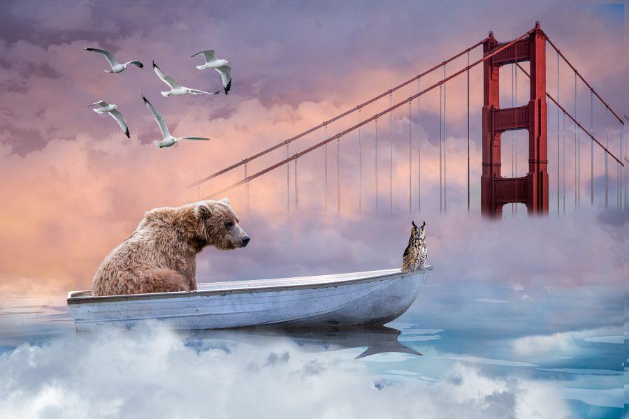 Bear and Owl Went to Sea - Jan Lightfoot