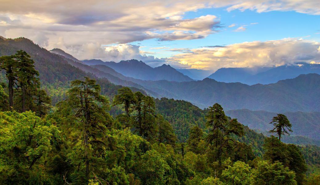 Dochula Resort, Dochula, Bhutan - Gary Cawood