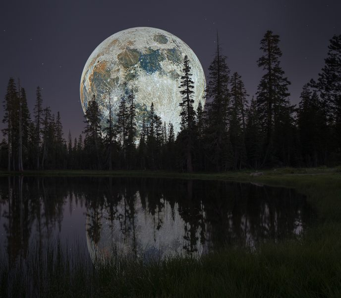 Real Colors of the Moon Over Lily Pond - Don Goldman