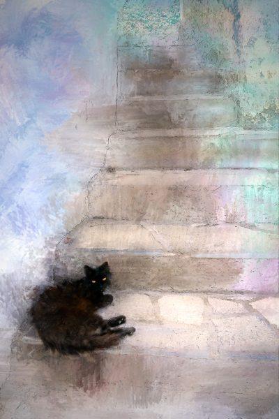 Black Cat - Jan Lightfoot