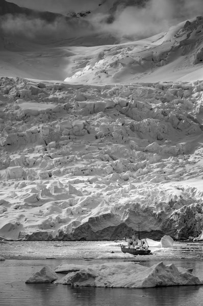 Antarctic Explorer - Pat Honeycutt