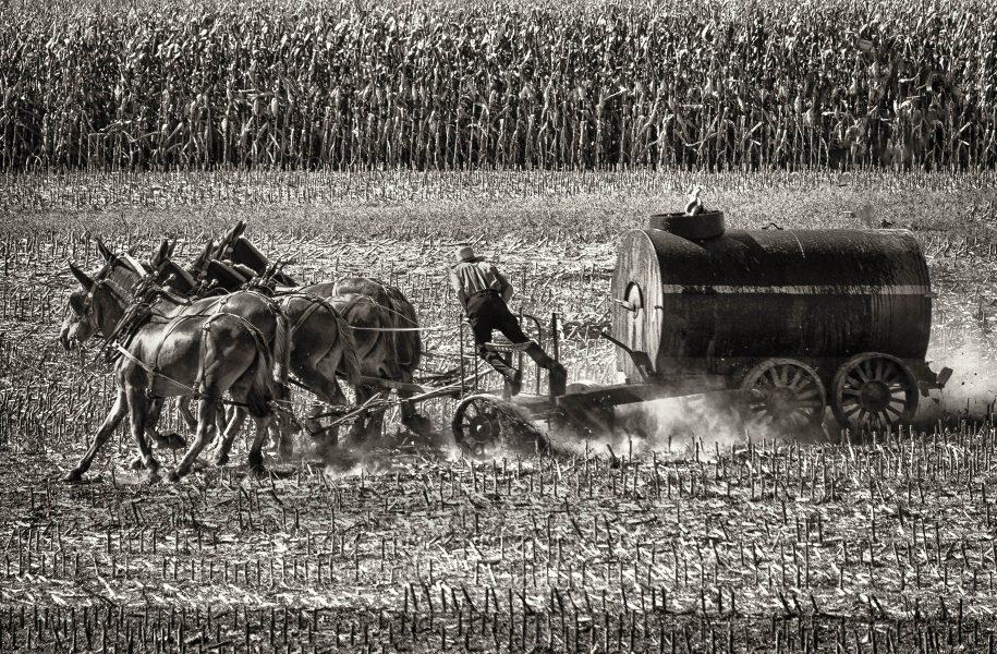 October Harvest - Jim Berger