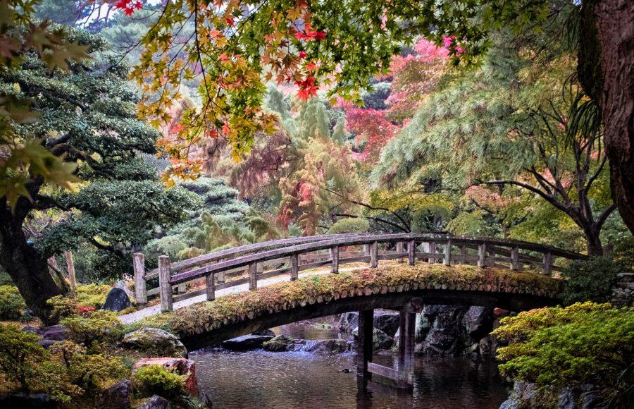 Japanese Garden in Autumn - Theo Goodwin