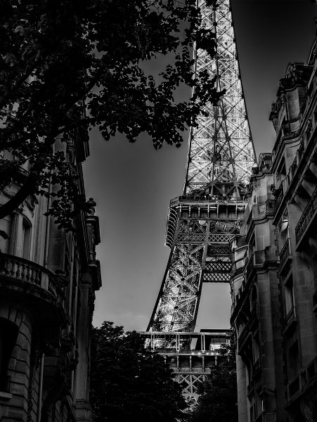 Eiffel Tower at Dusk - Patricia Honeycutt