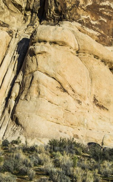 Grumpy Rock, Joshua Tree NP - Gay Kent