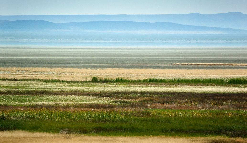 Thompson Reservoir, Lake County, Oregon - Barbara Maurizi