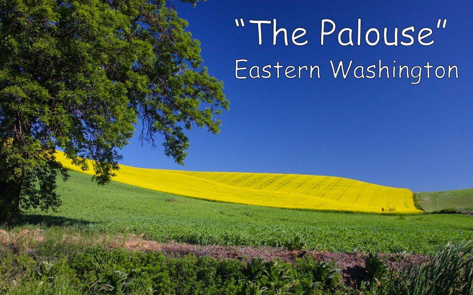 The Palouse- Eastern WA 01 - Truman Holtzclaw