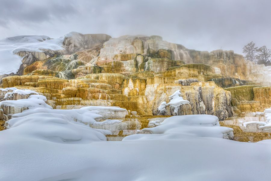 Winter in Yellowstone 03 - Doug Arnold