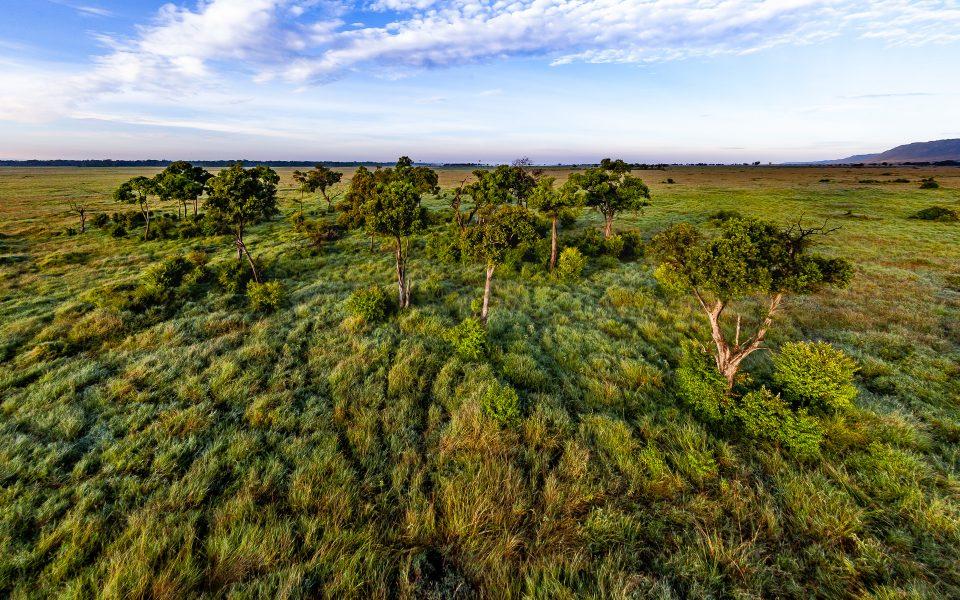 Morning View of the Maasai Mara from Balloon Ride - Jan Lightfoot