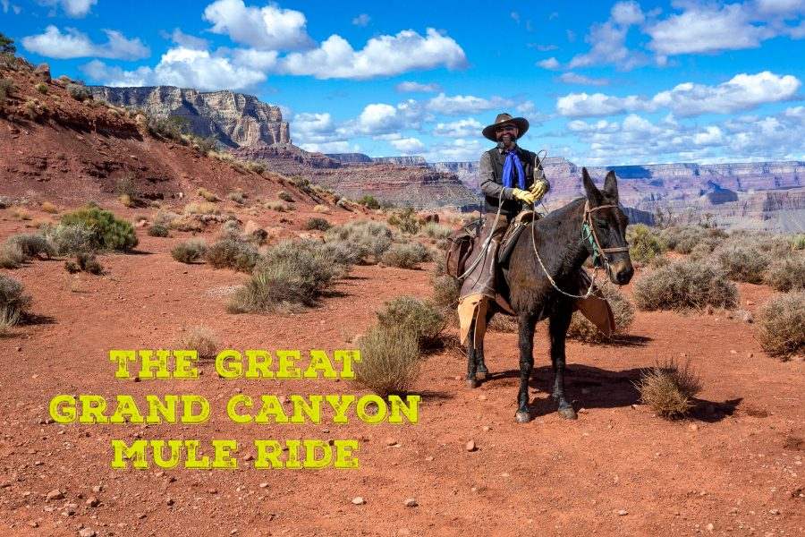 The Great Grand Canyon Mule Ride 01 - Jan Lightfoot