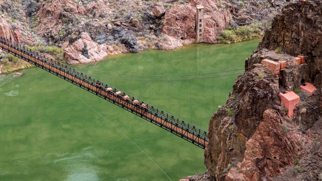 The Great Grand Canyon Mule Ride 04 - Jan Lightfoot