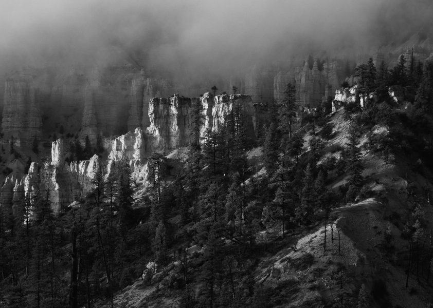 Finding Light in the Fog 02 - Aaron Vizzini