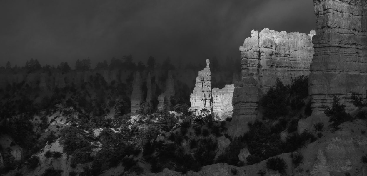 Finding Light in the Fog 04 - Aaron Vizzini