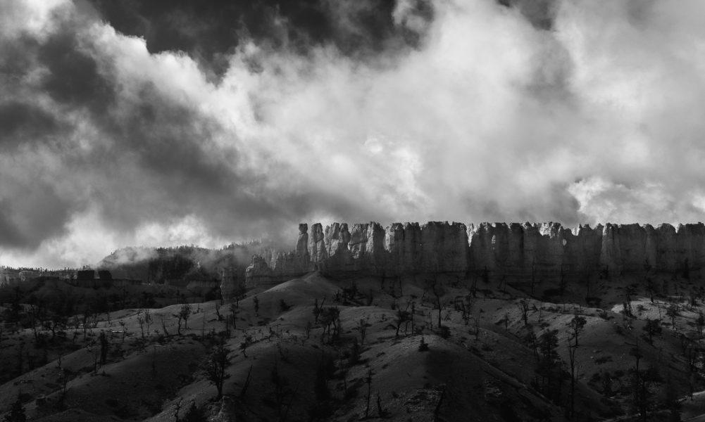 Finding Light in the Fog 06 - Aaron Vizzini
