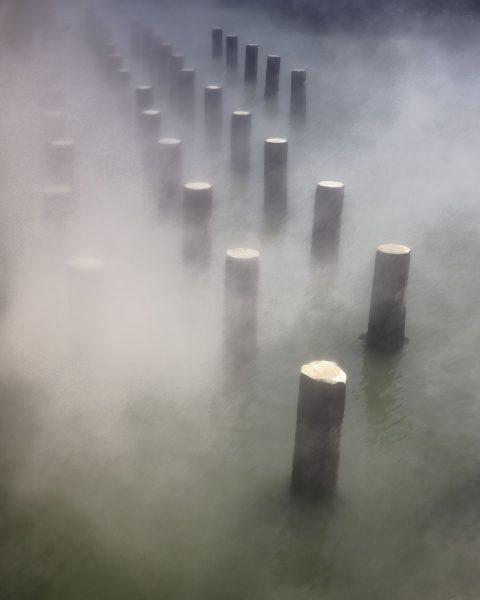 Fog - Kathleen Grady